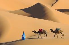 Scena marocchina del deserto Fotografia Stock Libera da Diritti