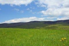 scena mountain croatia łąkowa Fotografia Royalty Free