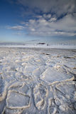 scena nabrzeżny śnieg Obrazy Royalty Free