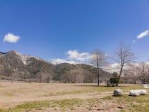 Scena naturale intorno alla quercia Glen Preserve fotografia stock