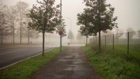 Scena nebbiosa della via fotografia stock