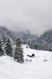 Scena nebbiosa di inverno Immagini Stock Libere da Diritti