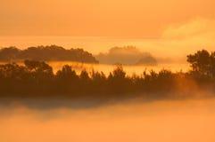 Scena nebbiosa di mattina Fotografie Stock