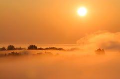 Scena nebbiosa di mattina Fotografia Stock Libera da Diritti