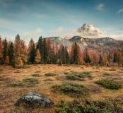 Scena nebbiosa di mattina in parco nazionale Tre Cime di Lavaredo Fotografia Stock Libera da Diritti