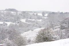 scena śnieg Fotografia Stock