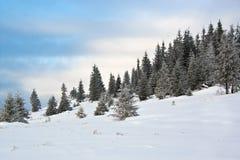 scena śnieg obraz royalty free