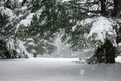 Scena pacifica di inverno Fotografia Stock Libera da Diritti