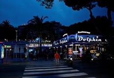 Scena Palma Nova di notte Fotografia Stock Libera da Diritti