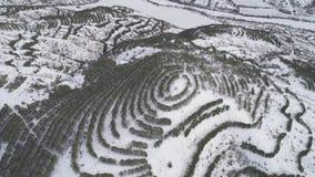Scena piacevole di inverno in montagne colpo Vista superiore del paesaggio nevoso della montagna nella foresta archivi video