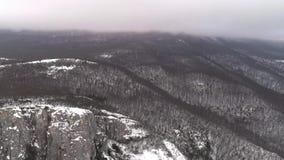 Scena piacevole di inverno in montagne colpo Vista superiore del paesaggio nevoso della montagna nella foresta stock footage