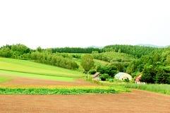 Scena rurale Fotografie Stock Libere da Diritti