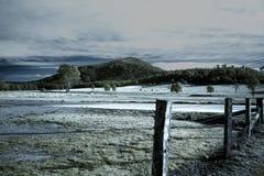 Scena rurale australiana Immagine Stock