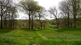 Scena rurale della primavera nella campagna di Devon South West England Immagine Stock Libera da Diritti