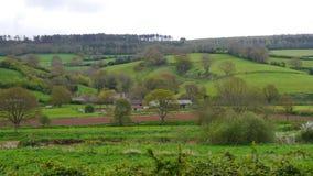 Scena rurale della primavera nella campagna di Devon South West England Fotografie Stock