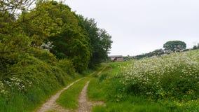 Scena rurale della primavera nella campagna di Devon South West England Fotografia Stock Libera da Diritti