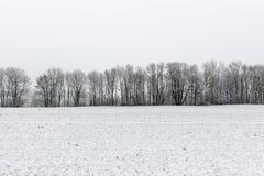 Scena rurale di inverno con nebbia ed i campi bianchi Fotografia Stock