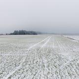 Scena rurale di inverno con nebbia ed i campi bianchi Fotografie Stock Libere da Diritti