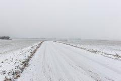 Scena rurale di inverno con nebbia ed i campi bianchi Immagini Stock