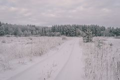scena rurale di inverno con neve ed effetto bianco dell'annata dei campi immagine stock libera da diritti