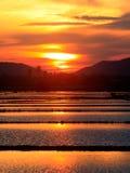 Scena rurale di tramonto all'interno Borneo in profondità Fotografia Stock