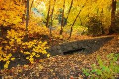 Scena rustica di autunno fotografia stock