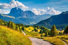 Scena soleggiata di estate nella valle Gardena Fotografie Stock