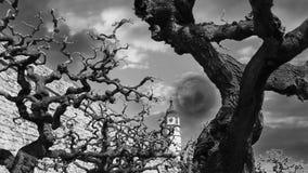 scena spaventosa nella notte con i rami e la chiesa di albero stock footage