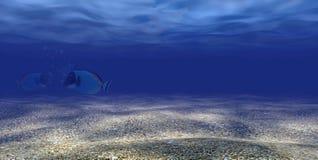 scena subacquea 3d con 3 pesci Immagine Stock Libera da Diritti
