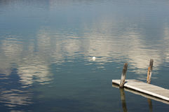 Scena tranquilla del lago morning Immagini Stock Libere da Diritti