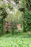 Scena tropicale intorno alla valle di Vinales Fotografia Stock Libera da Diritti