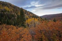 Scena variopinta di autunno del La-sal di Manti immagini stock