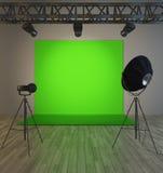 Scena verde d'annata sotto il riflettore dell'albero Fotografia Stock