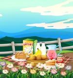 Scena z śniadaniowym ustawiającym na pyknicznym płótnie Obraz Stock
