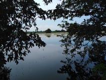 Scenario fra due T tema scuro dell'acqua dolce fotografie stock libere da diritti