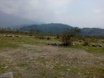 Scenary of Bhutan. Pedestal of Bhutan's mountains Royalty Free Stock Photos