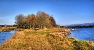 Scenary blisko rzeki w obszarze wiejskim obraz royalty free