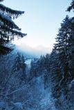 Scenary od wyższości w Allgäu podczas zimy Obraz Stock