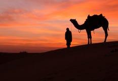 Scence del desierto con el camello y el cielo dramático Foto de archivo libre de regalías