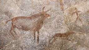 The scene of an ancient hunt on a cave wall, made with ocher. Archeology. antiquity Royalty Free Stock Photo