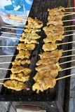 Meat skewers on outdoor grill stock photos