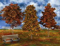 Scene of autumnal park. Stock Photo