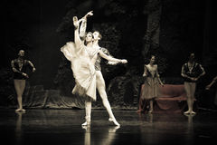 A Scene of Ballet Swan Lake Stock Photo