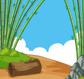 Scene with bamboo on the hill Royalty Free Stock Images
