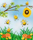Scene with bees and beehive in garden. Illustration Royalty Free Stock Photography