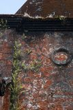 Plants growing on wall at the abandoned colonel french catholic church royalty free stock photo