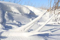 Scene della neve Immagine Stock
