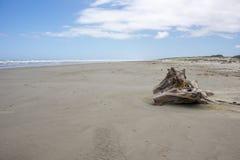Scene della spiaggia di Hokio Fotografia Stock Libera da Diritti
