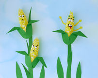 Scene depicting genetically modified corn Stock Photo