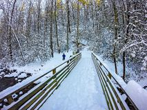Scene di inverno al parco di stato del sud della montagna in North Carolina immagini stock libere da diritti